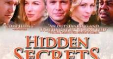 Película Hidden Secrets