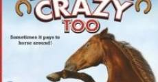 Horse Crazy 2: The Legend of Grizzly Mountain (2010)