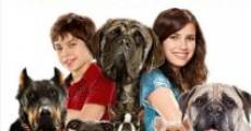 Hotel for Dogs film complet