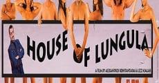 Película House of Lungula
