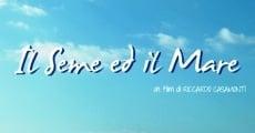 Ver película La semilla y el mar