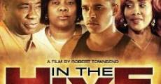 In the Hive (2012) stream