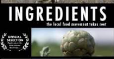 Ingredients (2009) stream
