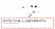 Into the Labyrinth (2008)