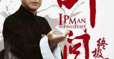 Película Ip Man: The Final Fight
