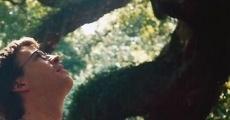 Ver película Isla de John