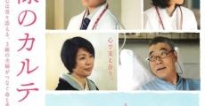Filme completo Kamisama no karute 2