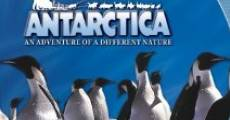 Antartica, prisonniers du froid streaming