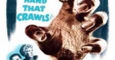 Película La bestia con cinco dedos