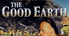 La buona terra