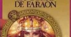 Película La Corte de Faraón