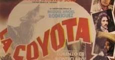 Ver película La coyota