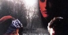 Ver película La dama del lago