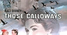 Calloway,le trappeur streaming