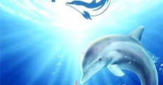 Dolphin Tale film complet