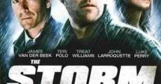 Ver película La gran tormenta