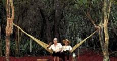 Película La hamaca paraguaya