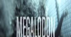 Ver película La leyenda del Megalodón