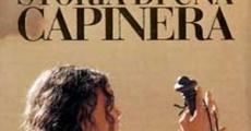 Filme completo Sonho Proibido