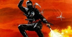 Revenge of the Ninja film complet