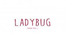 Película Ladybug