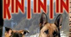 Finding Rin Tin Tin film complet