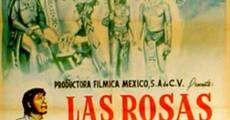 Filme completo Las rosas del milagro