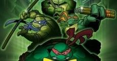 Ver película Las Tortugas Ninja: Turtles Forever