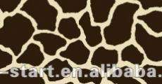 Le giraffe