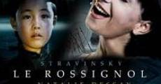 Ver película Le rossignol