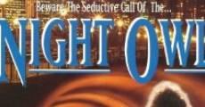 Ver película Lechuza de noche