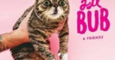 Ver película Lil Bub & Friendz
