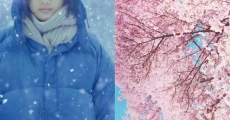Filme completo Little Forest: Winter/Spring