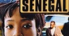 Filme completo Little Senegal