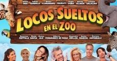 Ver película Locos sueltos en el Zoo