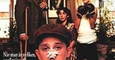 Filme completo Loucuras de Garoto
