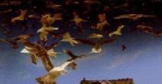 Filme completo Os Pássaros 2