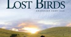 Lost Birds streaming