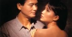 Ver película Lost Romance