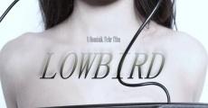 Lowbird streaming