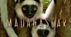 Madagascar (2011) stream