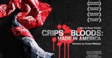 Película Made in America