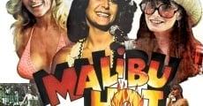 Ver película Malibu Hot Summer
