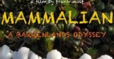 Mammalian (2010) stream