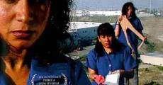video response maquilapolis