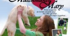 Filme completo Matchmaker Mary