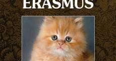 Filme completo Mi loco Erasmus