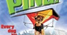 Filme completo Ping! Esperto para Cachorro