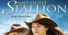 Filme completo Midnight Stallion