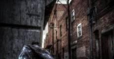 Película Mill Street